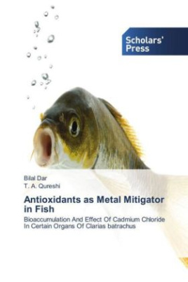 Antioxidants as Metal Mitigator in Fish
