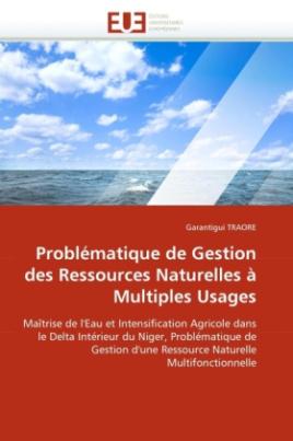 Problématique de Gestion des Ressources Naturelles à Multiples Usages