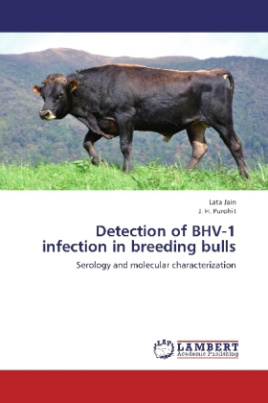 Detection of BHV-1 infection in breeding bulls