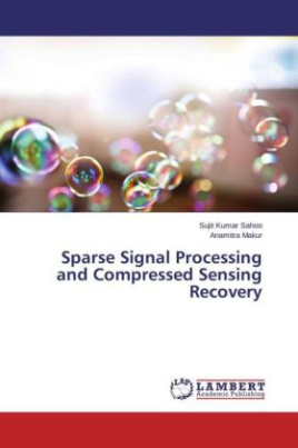 Sparse Signal Processing and Compressed Sensing Recovery