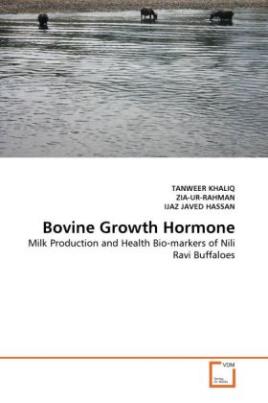 Bovine Growth Hormone
