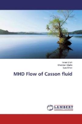 MHD Flow of Casson fluid