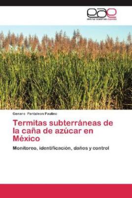 Termitas subterráneas de la caña de azúcar en México