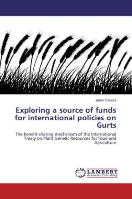 Exploring a source of funds for international policies on Gurts