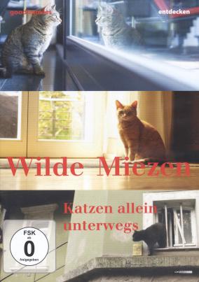 Wilde Miezen - Katzen allein unterwegs