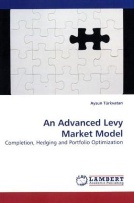 An Advanced Levy Market Model