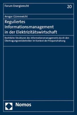 Reguliertes Informationsmanagement in der Elektrizitätswirtschaft