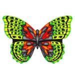 Kinderdrachen Mini Mylar Kites - Schmetterling grün