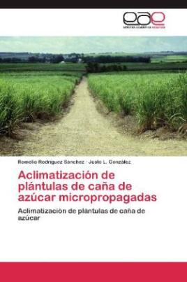Aclimatización de plántulas de caña de azúcar micropropagadas