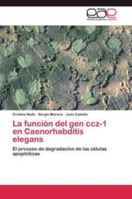 La función del gen ccz-1 en Caenorhabditis elegans