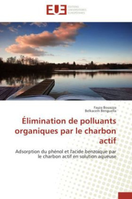 Élimination de polluants organiques par le charbon actif