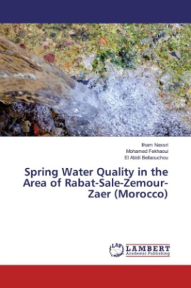Spring Water Quality in the Area of Rabat-Sale-Zemour-Zaer (Morocco)