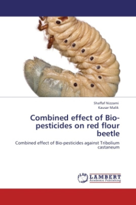 Combined effect of Bio-pesticides on red flour beetle