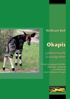 Okapis - Geheimnisvolle Urwaldgiraffen